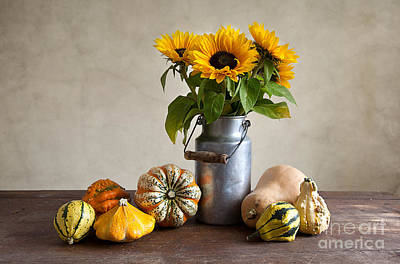 Pumpkins And Sunflowers Art Print by Nailia Schwarz