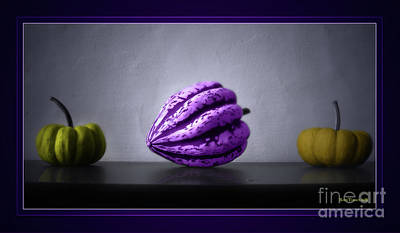Ornamentally Photograph - Pumpkins by Bruno Santoro