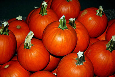 Photograph - Pumpkins For Sale by LeeAnn McLaneGoetz McLaneGoetzStudioLLCcom