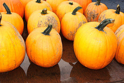 Photograph - Pumpkins Harvest by Margie Avellino