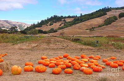 Art Print featuring the photograph Pumpkins Of Marin by K L Kingston