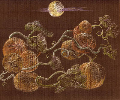Moonlit Night Drawing - Pumpkins On A Vine by Candace  Hardy