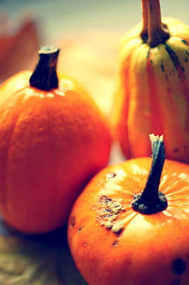 Healthy Eating Photograph - Pumpkins by Photo by Ira Heuvelman-Dobrolyubova