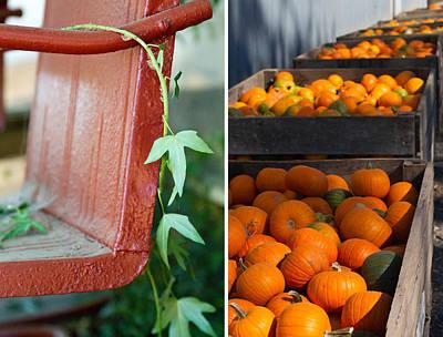 Pumpkins Art Print by Rebecca Cozart