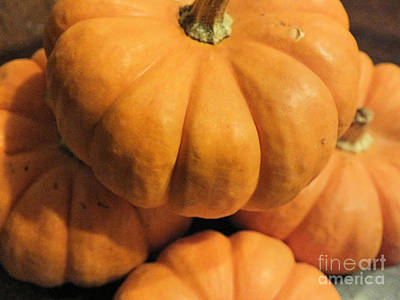 Photograph - Pumpkins by Tammy Herrin
