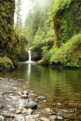 Photograph - Punch Bowl Falls by Frank Townsley