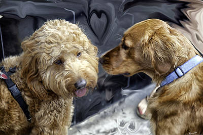 Golden Doodle Photograph - Puppy Love by Madeline Ellis