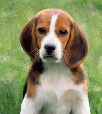 Puppy Portrait Art Print by Snake Jagger