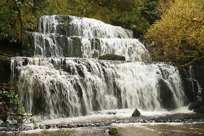 Photograph - Purakaunui Falls by Graeme Knox