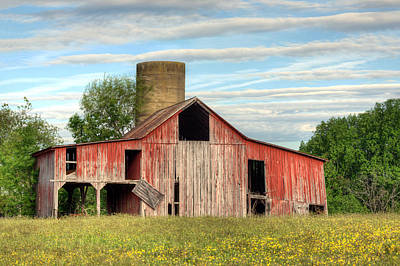 Fauquier County Virginia Photograph - Pure Country by JC Findley