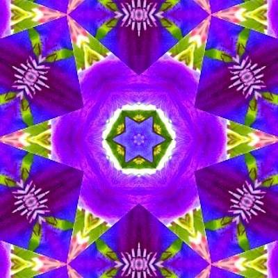 Fractal Wall Art - Photograph - #purple & Green #star #fractal #art by Pixie Copley
