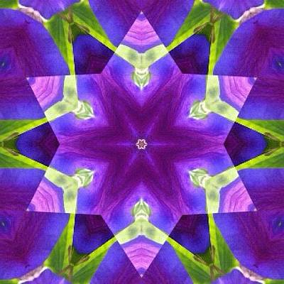Fractal Wall Art - Photograph - #purple And Green #star #fractal #art by Pixie Copley