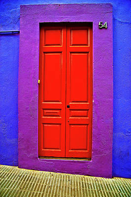 Photograph - Purple And Red Door by Harry Spitz