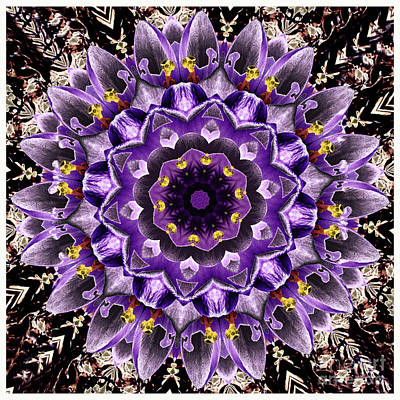 Purple Crocuses Mandala  Art Print