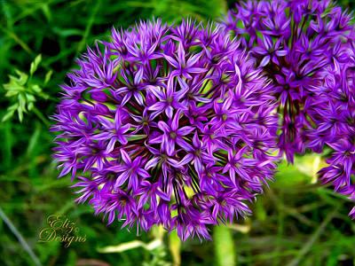 Purple Flower Puff Original by Elizabeth Eells