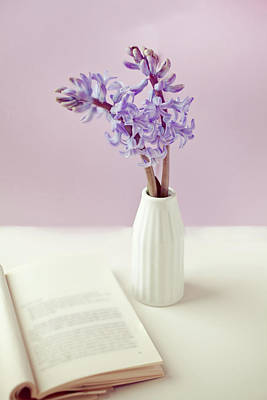 Colored Background Photograph - Purple Flower Vase by Uccia_photography