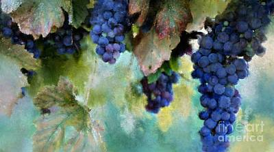 Purple Grapes Digital Art - Purple Grapes by Susan Holsan