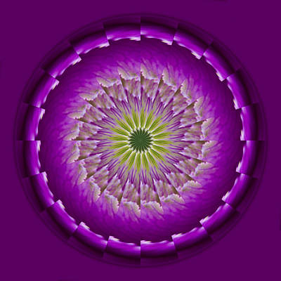 Photograph - Purple Green Mandala by Bill Barber