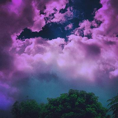 Purple Haze Art Print by Cameron Bentley