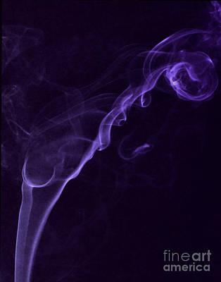 Purple Haze Art Print by Paul Ward