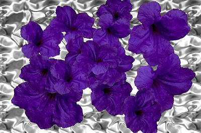 Platinum Photograph - Purple On Platinum by DigiArt Diaries by Vicky B Fuller