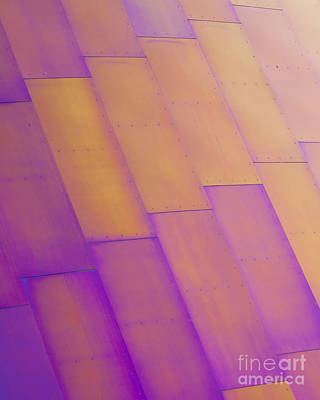 Metal Sheet Photograph - Purple Orange I by Chris Dutton