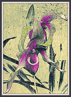 Art Print featuring the mixed media Purple Orchid  by Irina Hays