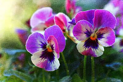 Message Art Photograph - Purple Pansies by Heidi Smith