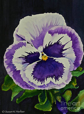 Painting - Purple Pansy by Susan Herber
