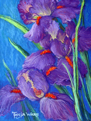 Realistic Pastel Painting - Purple Passion by Tanja Ware