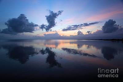 Photograph - Purple Reflections by Adam Jewell