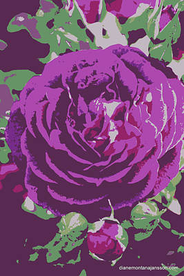 Photograph - Purple Roses by Diane montana Jansson