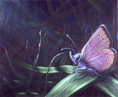 Painting - Purple by Shawn Kawa