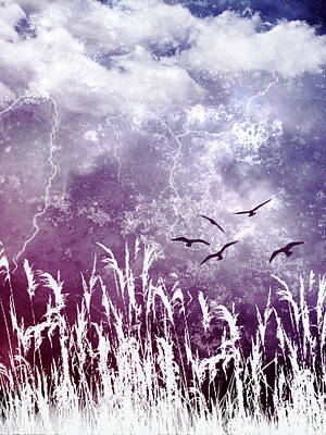 Photograph - Purple Skies by Ellen Heaverlo