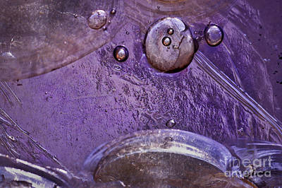 Contre-jour Photograph - Purple Stained Glass by Susan Isakson