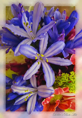 Art Print featuring the photograph Purple Stars by Debbie Portwood