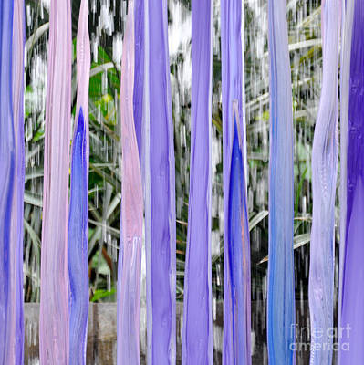 Photograph - Purple Stripes by Cheryl McClure