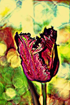Photograph - Purple Taffeta Ruffles by Diane montana Jansson