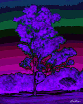 Photograph - Purple Tree And Rainbow Sky by Diana Haronis