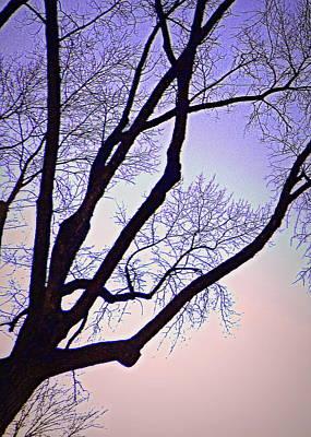 Purpler Branch Art Print by Dan Stone