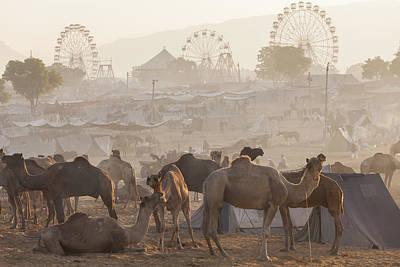 Festivals Of India Photograph - Pushkar Camel Fair, Pushkar, Rajasthan, India by Peter Adams