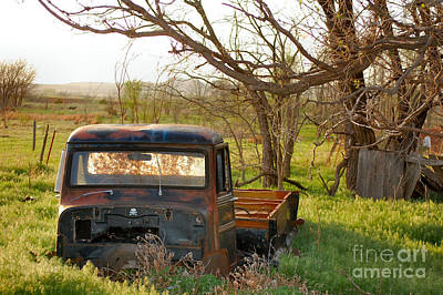 Photograph - Put Out To Pasture2 by Anjanette Douglas