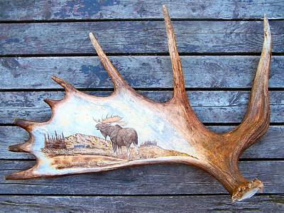 Pyrography - Pyrography On Moose Horn by Adam Owen