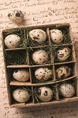 Quail Eggs In Box Art Print by Garry Gay