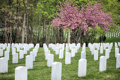 Photograph - Quantico National Cemetery by JC Findley