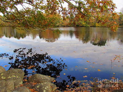 Queen's River Reflection Art Print