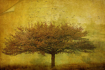 Digital Art - Quercus Robur by Margaret Hormann Bfa