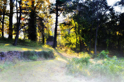 Quiet Morning In The Woods Print by Bill Cannon