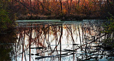 Photograph - Quiet Pond by Edward Peterson