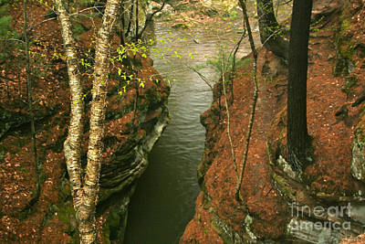 Photograph - Quiet Rocky Gorge by Joan McArthur